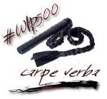 WIP500