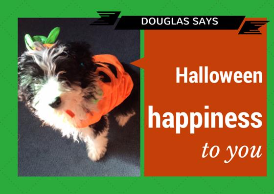 Douglas Halloween